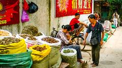 Markt in Guangzhou (Joerg1975) Tags: guangzhou china lumix asia asien panasonic guangdong asie 中国 kina sina cina canton chine 中國 f40 중국 广东 アジア dmclx1 الصين provinz 亚洲 kanton çin 廣東 copyrightprotected 亞洲 panasonicdmclx1 китай چين 广东省 آسيا จีน चीन азия κίνα ちゅうご