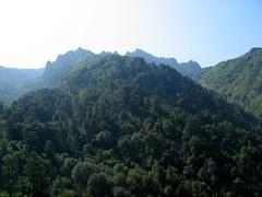 Arête NW du Migliarellu depuis Bocca Castellucciu