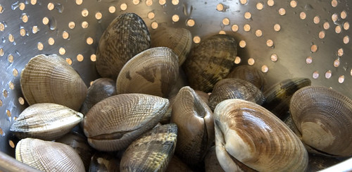 how to cook clams in shell filipino