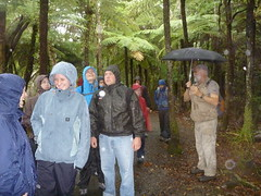 Students exploring Ark in the Park, a New Zealand rainforest