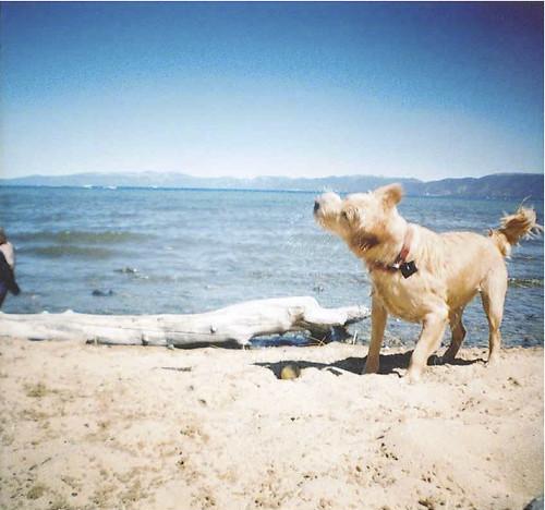 Cammie @ Lake Tahoe