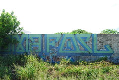 Uncovering some real old Fosl's (Stalkin The Lines) Tags: art ego graffiti paint florida tag westpalmbeach tags spray fl spraypaint graff drama palmbeach southflorida trackside fosl