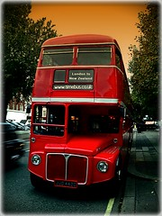 Let's take the bus to New Zeland