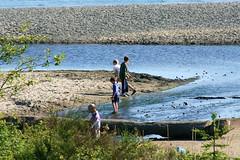 Boys (Culinary Fool) Tags: seattle summer playing beach boys water kids washington rocks wading broadview carkeekpark culinaryfool