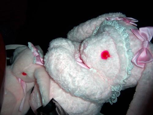 Bunny rabu!