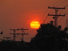 Red giant! (Mohsin Hassan Ansari) Tags: sunset evening sunsets settingsun