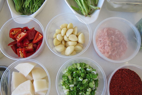 Making Kimchi: ingredients