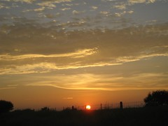 Fence Jumping_4861 (jaciii (off&on)) Tags: sunset sky clouds canon catchycolors painting texas oneofakind depression clounds skypainting driversview sunsetsandsunrisesaroundtheworld sd600 3000v120f canonsd600 mywinners depressionandbipolar challengethis crystalaward diamondclassphotographer flickrdiamond photoandcalendar sunisdrawing trancephoto clos3torelity everydayissunday depressedandbipolar clos3toreality godpaints sunshineluckystar aquinuestrocielo