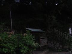 良寛記念公園 (2)