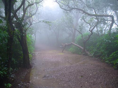 Petit chemin de Mahabaleswar