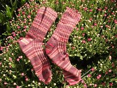 Garter Rib Socks.JPG