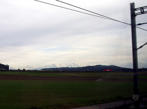Swiss Alps in the back