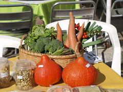 All organic! (rgrant_97) Tags: portugal feira praça coimbra scarecrows comércio espantalhos