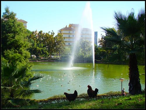 Parque de La Paloma (4)