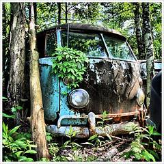 Splittie Still Life (Desolate Places) Tags: abandoned vw volkswagen connecticut central forgotten junkyard 1960s van kombi forlorn microbus type2 splittie