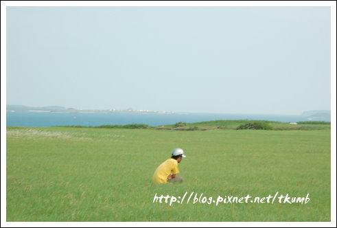 二崁草原 (7)