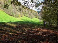 (fixlr) Tags: amanda austria hiking bregenzerwald