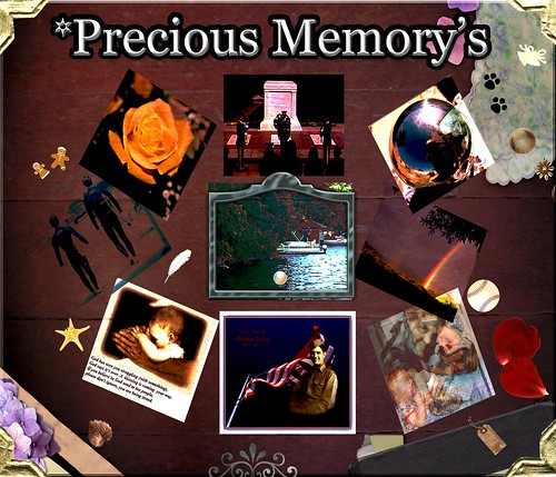 Precious Memory's