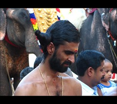 The weird hairdo.. (Trilok Rangan) Tags: light elephant festival temple panchavadyam melam mahout chenda vilakku pazhayannur bhagavathy thidambu niramala panchari