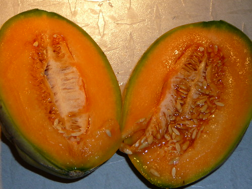 reife Zuckermelone