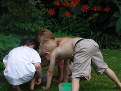 Boys catching frogs