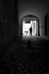 The Contrast (Pensiero) Tags: street blackandwhite man tree silhouette strada arch pavement lisboa lisbon tunnel uomo portfolio albero arco lisbona solitudes solitudini wwwstefanocorsocom