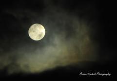 Moon Light (underoc32) Tags: moon nikon nightshot natural coolpix aroundtown coolpics coolpic nikoncoolpix hespeler waterlooregion abigfave nikonp90 underoc32