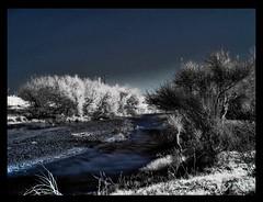 Soul drifting (ColdSummerPics) Tags: blue river landscape ir fuji fiume filter soul infrared anima tones drifting drift filtro infrarosso frombeyond 760nm coldsummerpics daaltrove salvobombara