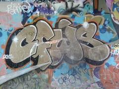 CFWS (Sorry officer, I didn't know graffiti was illigal) Tags: streetart cold vancouver graffiti pieces fuck murals skatepark whatever walls graff bombs bombing throwup vancity throws leeside throwy cfws