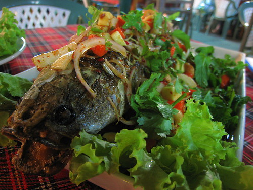 Snakehead fish topped with salad