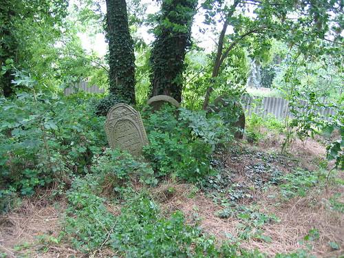 Abandoned Jewish cemetery in Jirice u Miroslavice