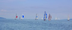 fleet away (isothermal) Tags: race sailing maine crusing islesboro newyorkyachtclub