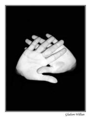 maos (G William) Tags: pink pordosol red people dog flores building verde green eye water rio yellow branco river hair teatro book pessoas poste shoes hand personal gray banco aves paisagem preto amarelo cachorro tenis antena olho livro lixo cachoeira fio reflexo cinza pssaros jardins cabelo teather roxo ribeirao letras sapato predio bico maos estudos antiguidade marrom leao cascata