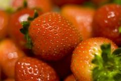 (Jason Fischer) Tags: red jason macro cooking fruit strawberries seeds everest fischer