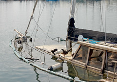 Resting place for ducks (Filippos @ Salonika) Tags: water marina boat sailing yacht accident greece thessaloniki wreck sinking