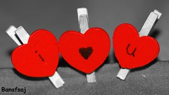 i love u (Banafsaj_Q8 .. Free Photographer) Tags: banafsaj