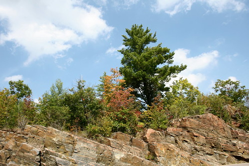 Canadian Shield | Flickr - Photo Sharing!