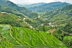 Banaue Rice Terraces Viewpoint by Marcos Chymera