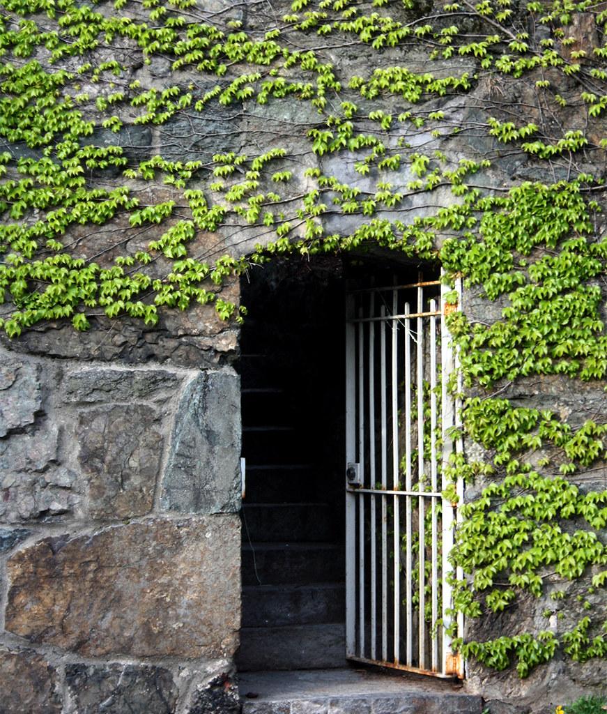 stone wall + gate