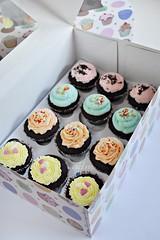 Mini Summer Cupcakes 1