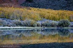 North Lake layers (Kurt Lawson) Tags: ca autumn mountains reflection fall creek frost unitedstates aspens layers sierras aspen sierranevada lonepine northlake