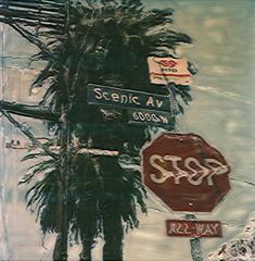 Scenic Stop Sign (tobysx70) Tags: california trees toby bus film sign polaroid sx70 drive time scenic manipulation palm stop hollywood hancock avenue 70 zero timezero sx beachwood rtd tobyhancock