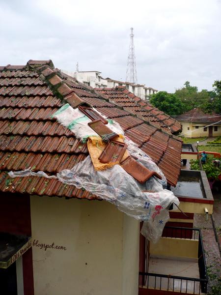 jiffy roof