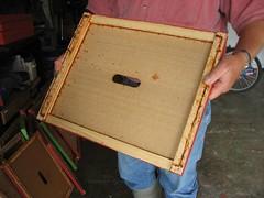 Beekeeping 2611