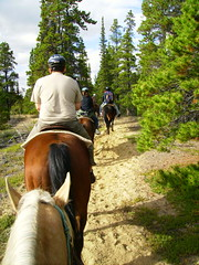Horseback riding and Canoeing at Skagway