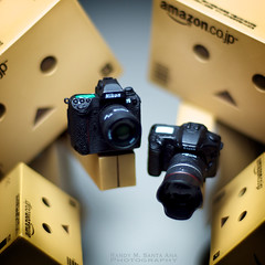 115/365:  Choose Your Weapon: Nikon or Canon. (Randy Santa-Ana) Tags: canon toys nikon danbo nikonf5 danboard 365daysofdanbo 16scalecamera