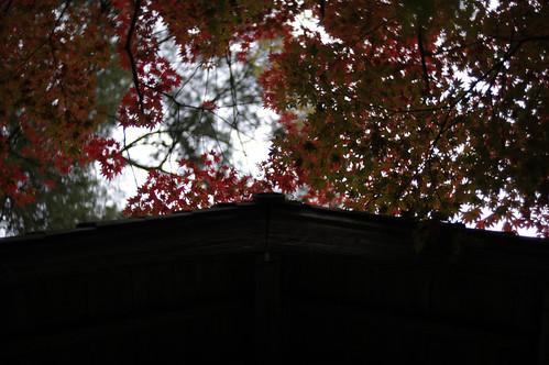 中野邸 2