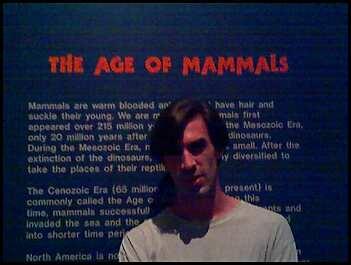 The Age of Mammals . com