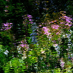 Giverny spirit (suite)