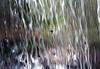 world at the other view (matiya firoozfar) Tags: water canon waterfall moving view iran ایران آبشار mahallat آب markazi محلات eos400d matiya matiyafiroozfar ماتیا فیروزفر firoozfar مرکزی ماتیافیروزفر استانمرکزی 400ِd markaziprovince